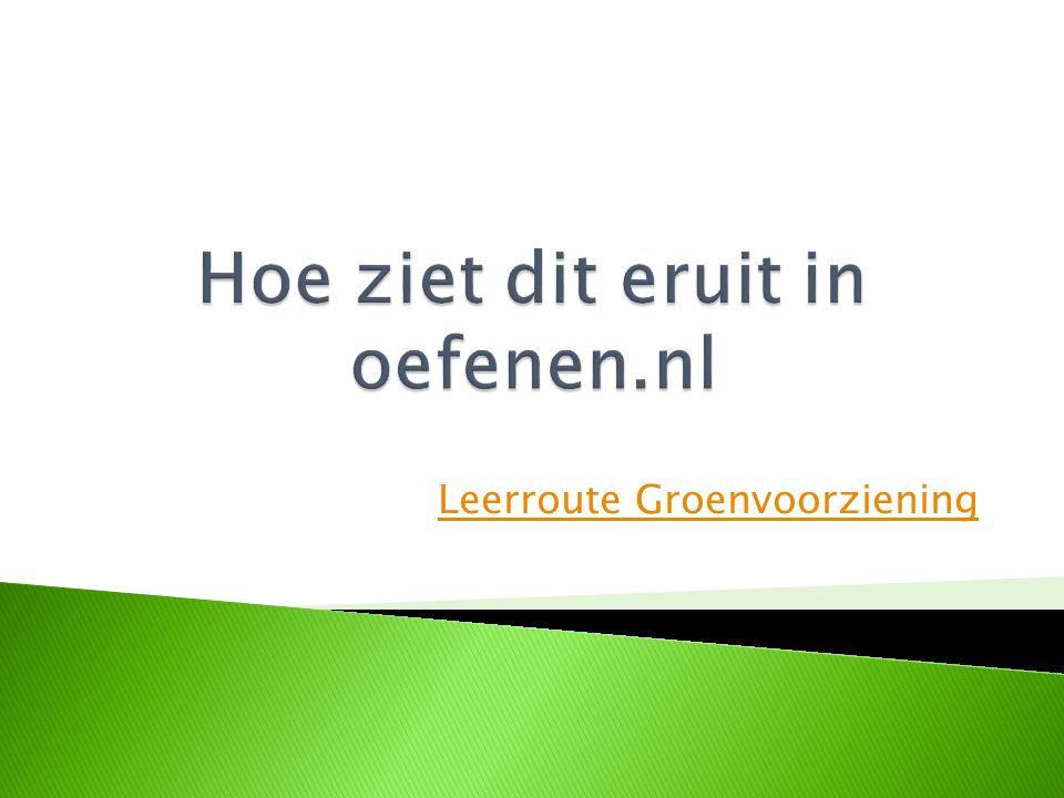 Hoe ziet dit eruit in oefenen.nl