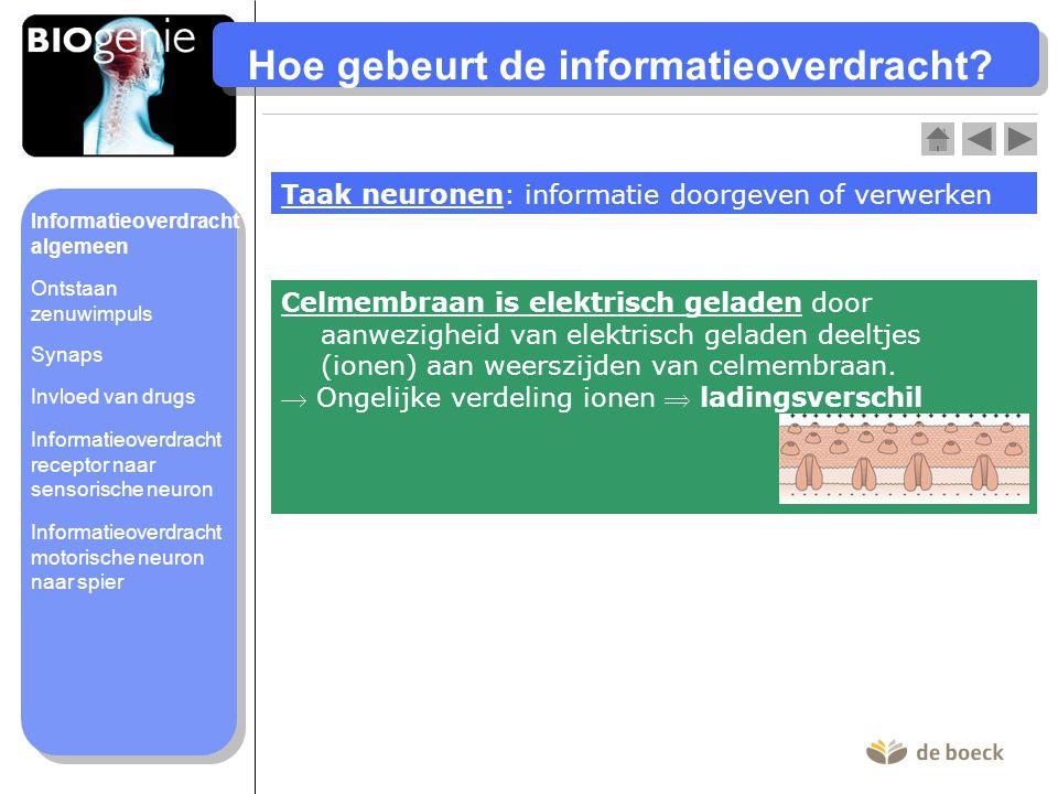 Hoe gebeurt de informatieoverdracht