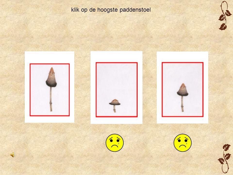 klik op de hoogste paddenstoel