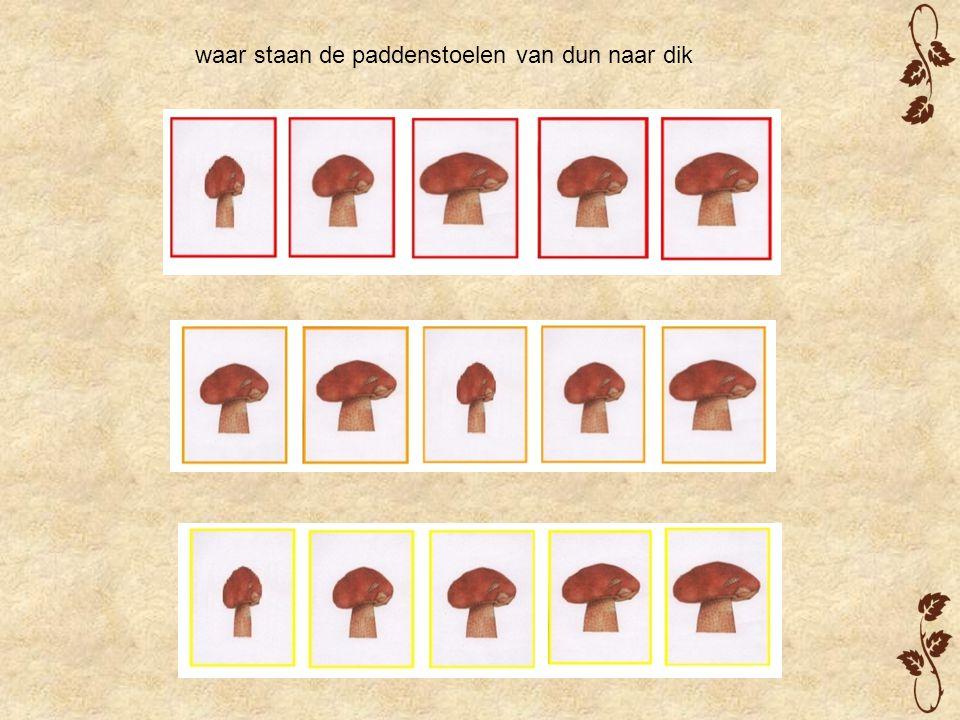 waar staan de paddenstoelen van dun naar dik