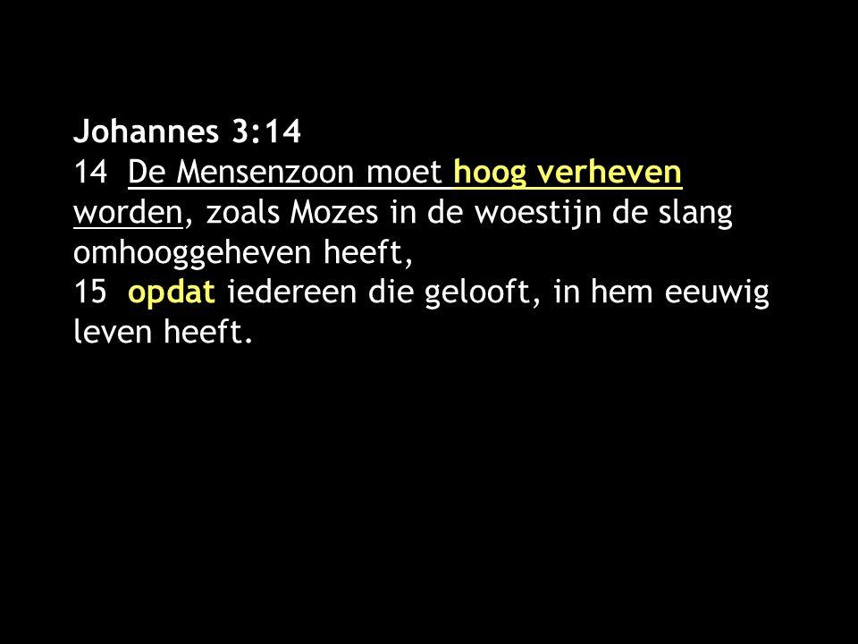 Johannes 3:14 14 De Mensenzoon moet hoog verheven worden, zoals Mozes in de woestijn de slang omhooggeheven heeft, 15 opdat iedereen die gelooft, in hem eeuwig leven heeft.