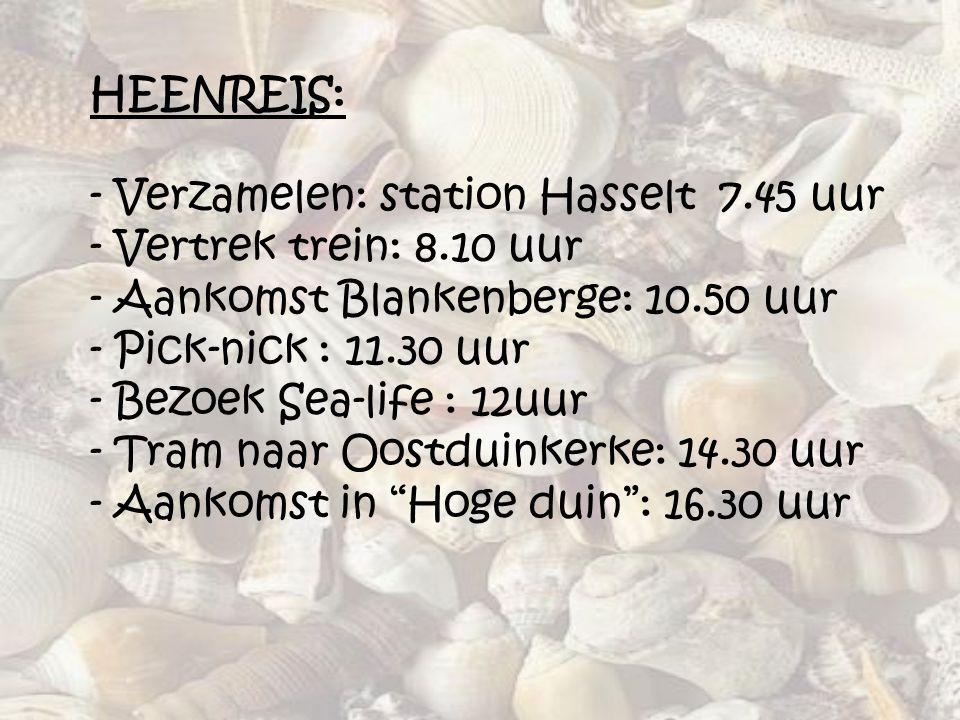 HEENREIS: - Verzamelen: station Hasselt 7. 45 uur - Vertrek trein: 8
