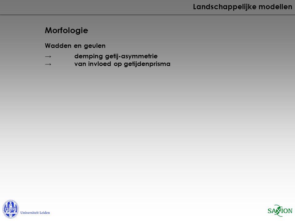 Morfologie Landschappelijke modellen Wadden en geulen