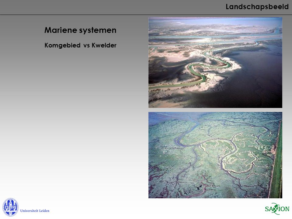 Landschapsbeeld Mariene systemen Komgebied vs Kwelder