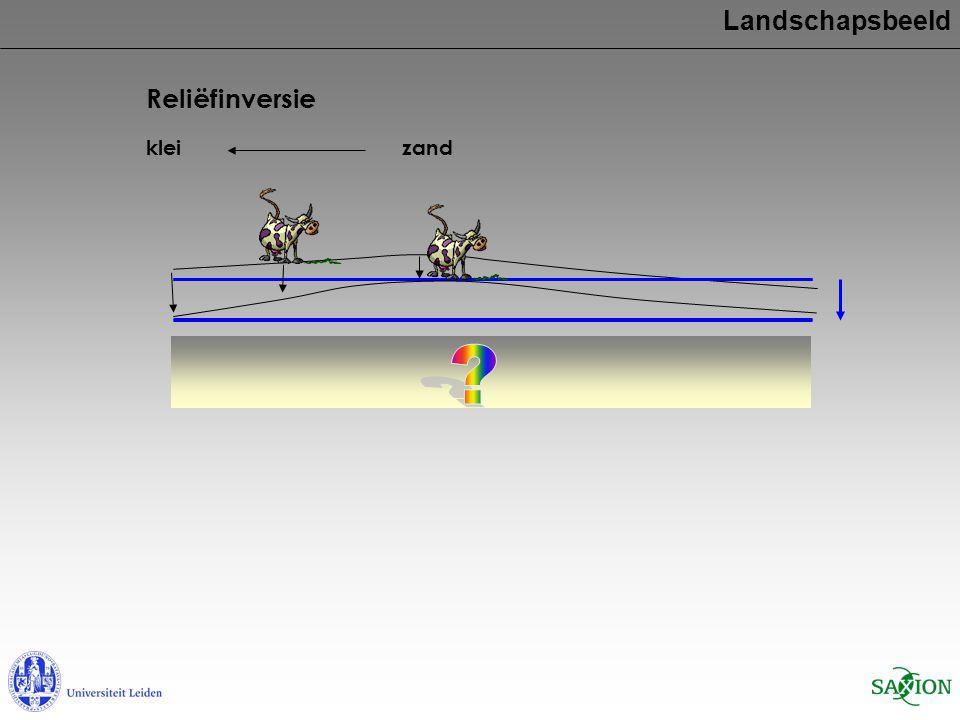 Landschapsbeeld Reliëfinversie klei zand