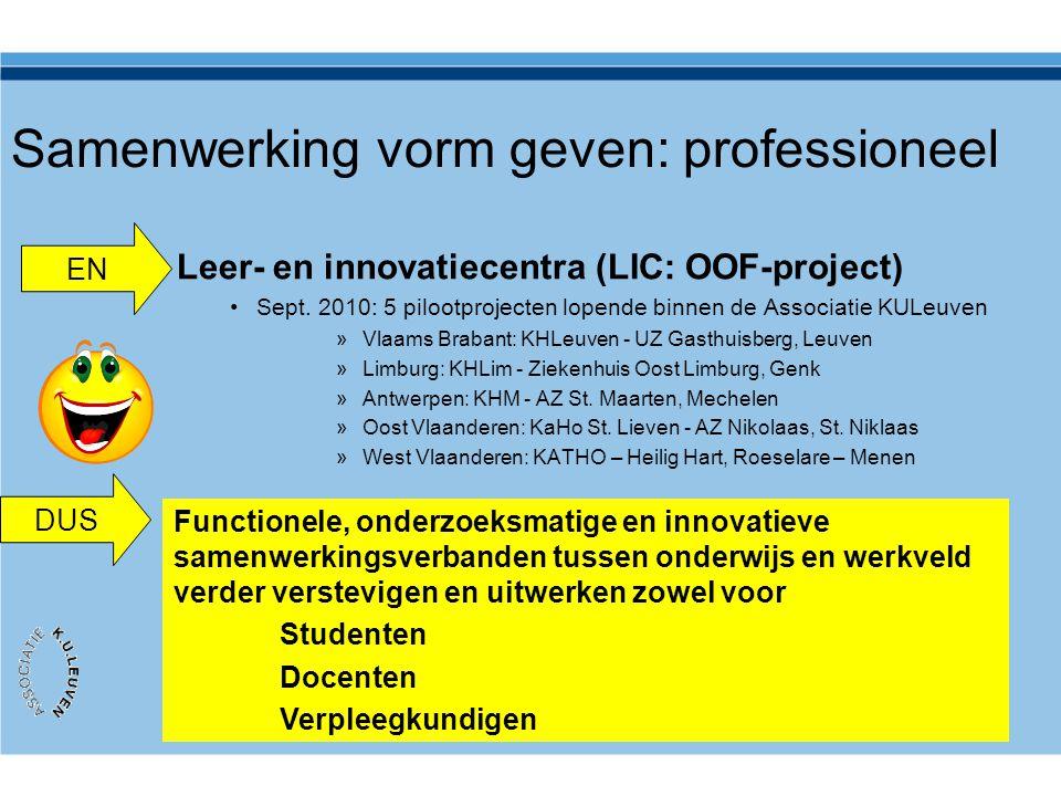 Samenwerking vorm geven: professioneel