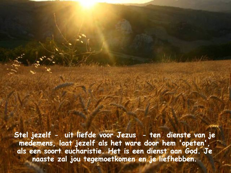 Stel jezelf - uit liefde voor Jezus - ten dienste van je medemens, laat jezelf als het ware door hem opeten , als een soort eucharistie.