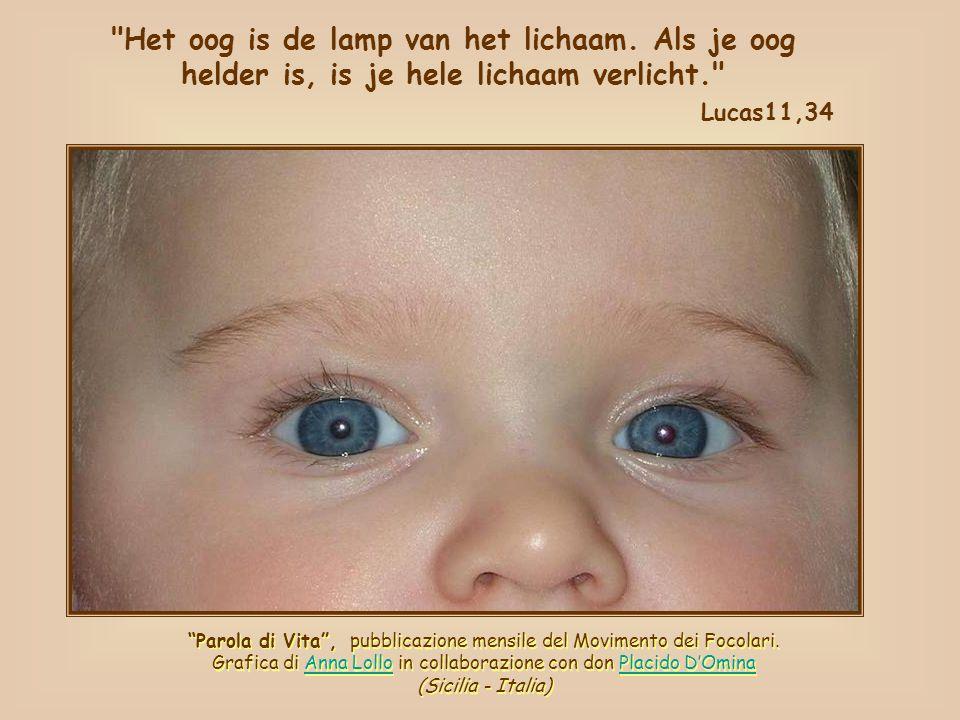 Het oog is de lamp van het lichaam