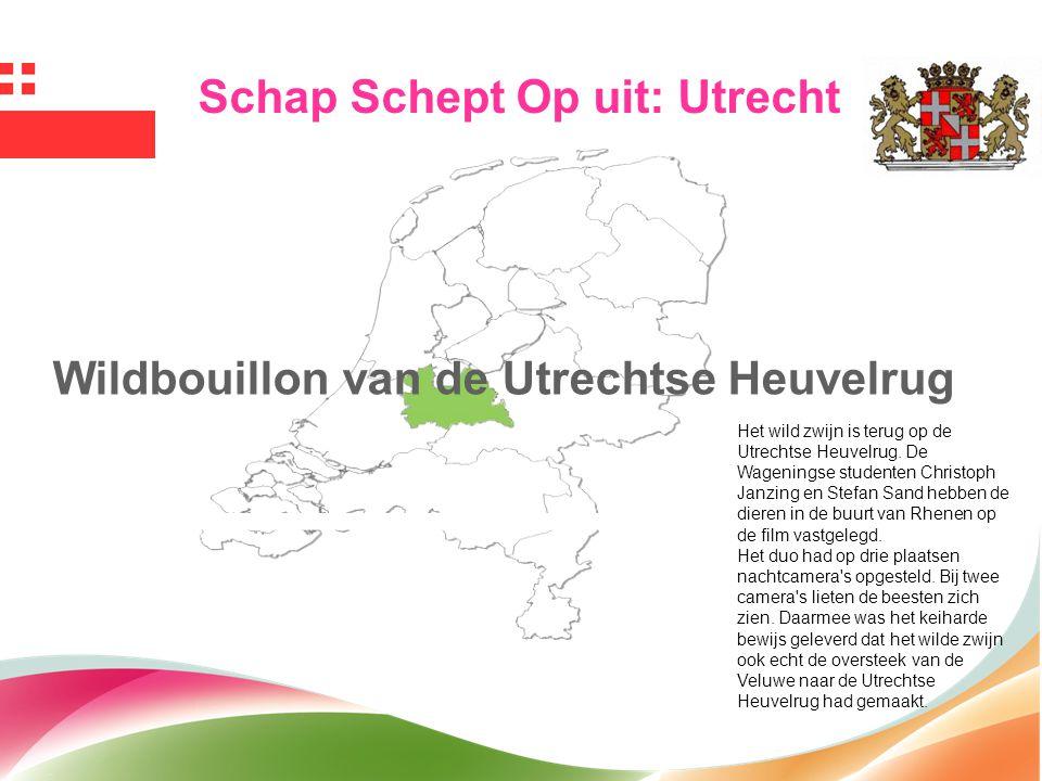 Schap Schept Op uit: Utrecht Wildbouillon van de Utrechtse Heuvelrug