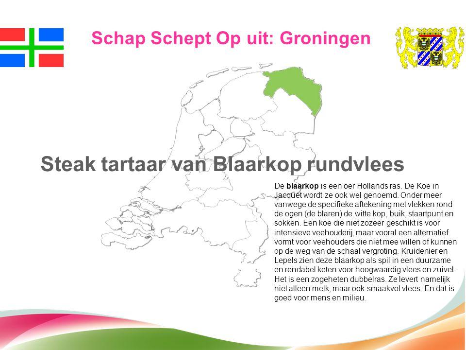 Schap Schept Op uit: Groningen Steak tartaar van Blaarkop rundvlees