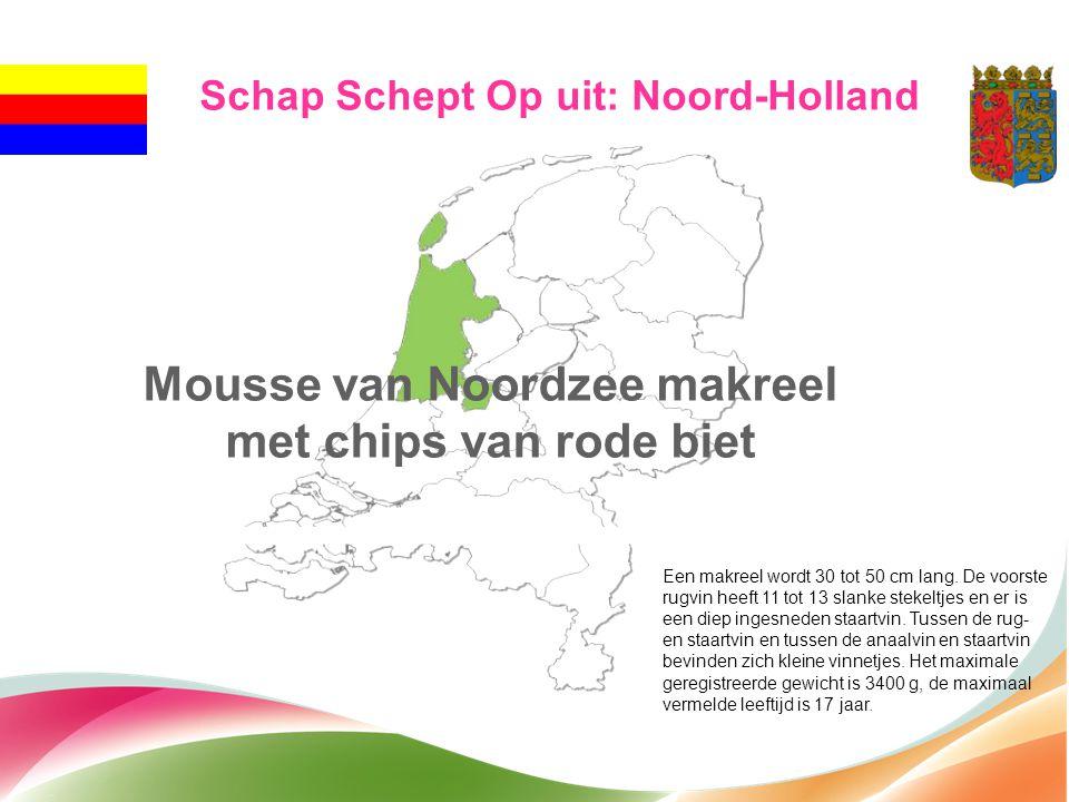 Schap Schept Op uit: Noord-Holland Mousse van Noordzee makreel