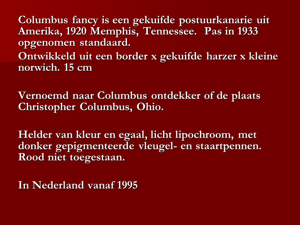 Columbus fancy is een gekuifde postuurkanarie uit Amerika, 1920 Memphis, Tennessee. Pas in 1933 opgenomen standaard.