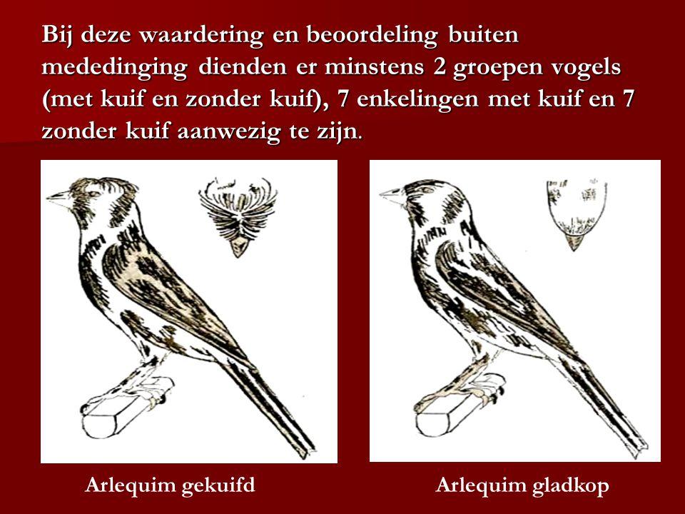 Bij deze waardering en beoordeling buiten mededinging dienden er minstens 2 groepen vogels (met kuif en zonder kuif), 7 enkelingen met kuif en 7 zonder kuif aanwezig te zijn.