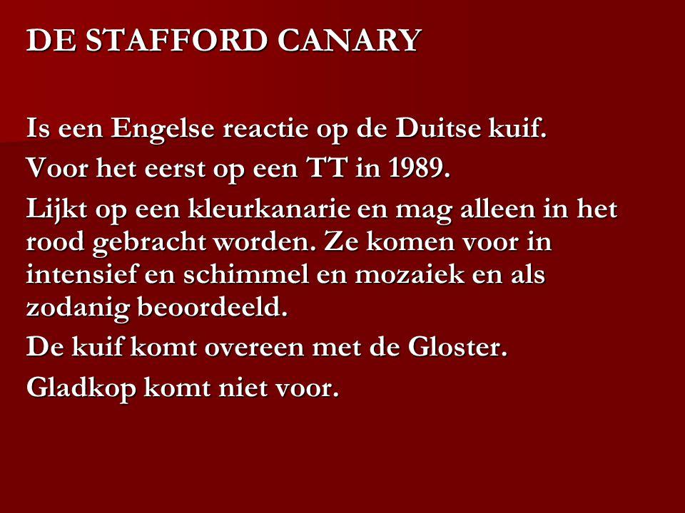 DE STAFFORD CANARY Is een Engelse reactie op de Duitse kuif.