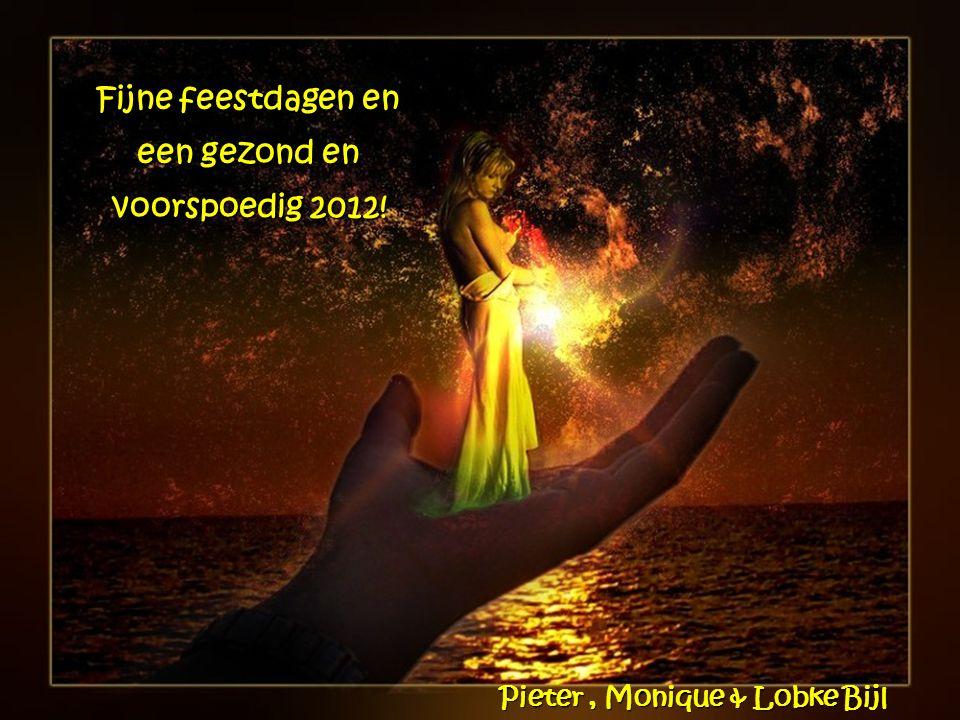 Fijne feestdagen en een gezond en voorspoedig 2012!