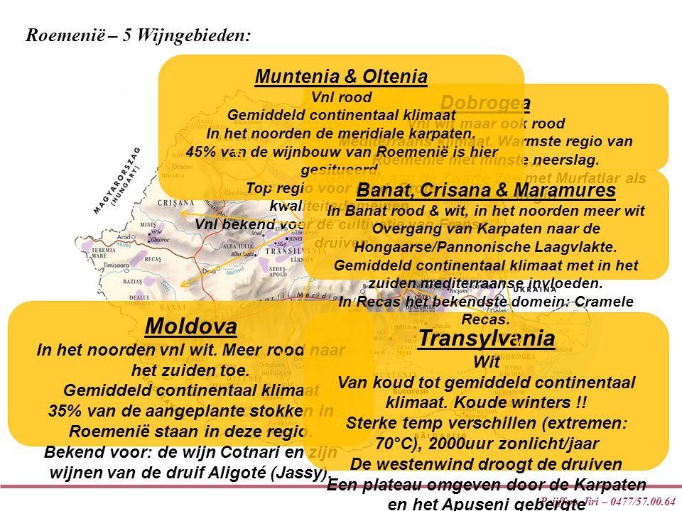 Moldova Transylvania Roemenië – 5 Wijngebieden: Muntenia & Oltenia