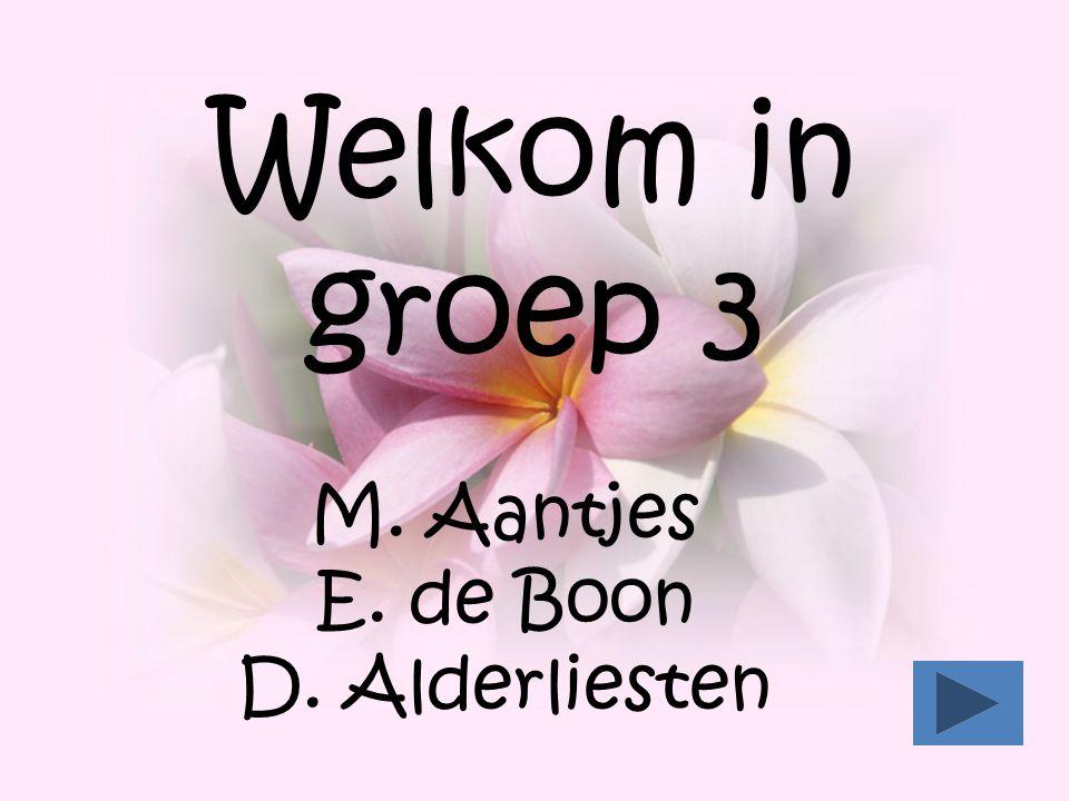 Welkom in groep 3 M. Aantjes E. de Boon D. Alderliesten