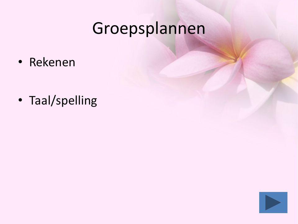 Groepsplannen Rekenen Taal/spelling