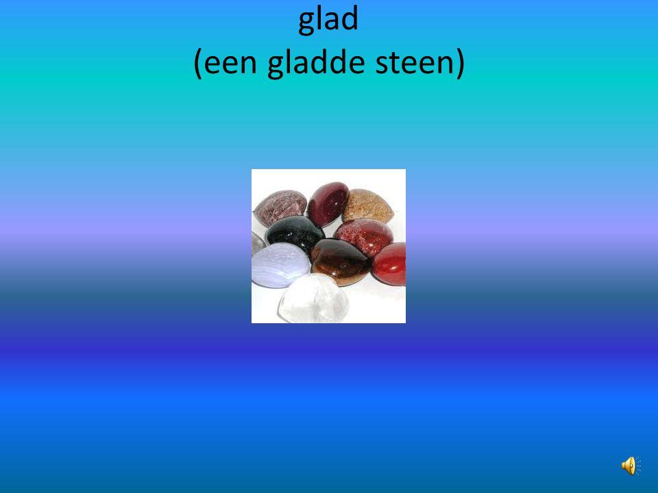 glad (een gladde steen)