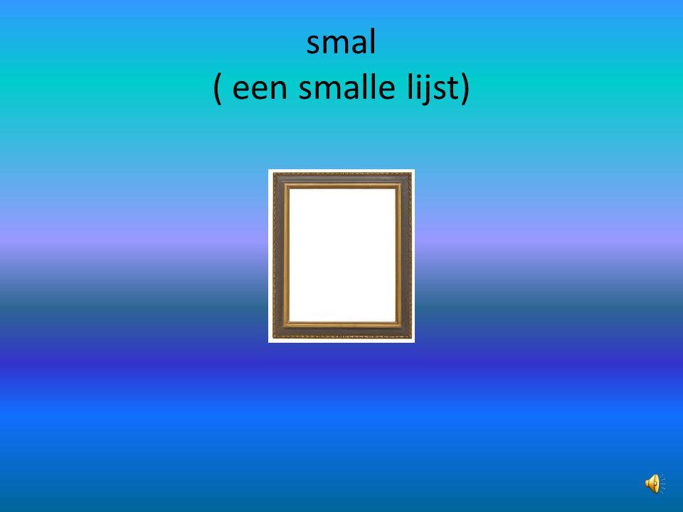 smal ( een smalle lijst)