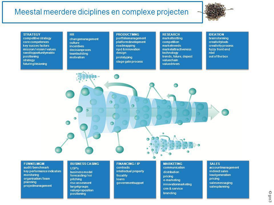 Meestal meerdere diciplines en complexe projecten