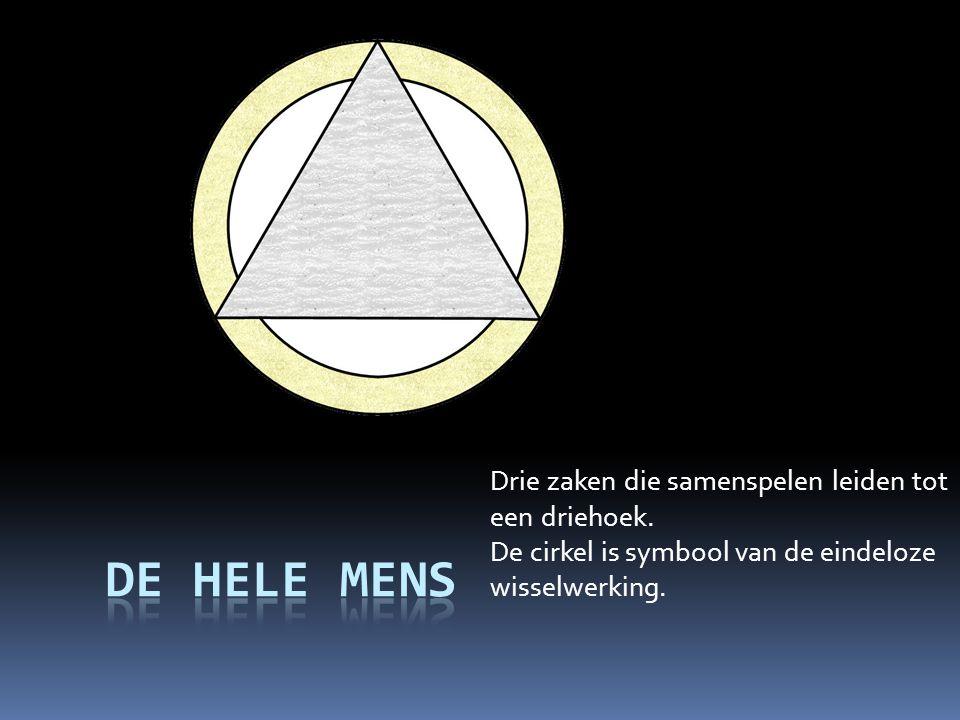 De hele mens Drie zaken die samenspelen leiden tot een driehoek.