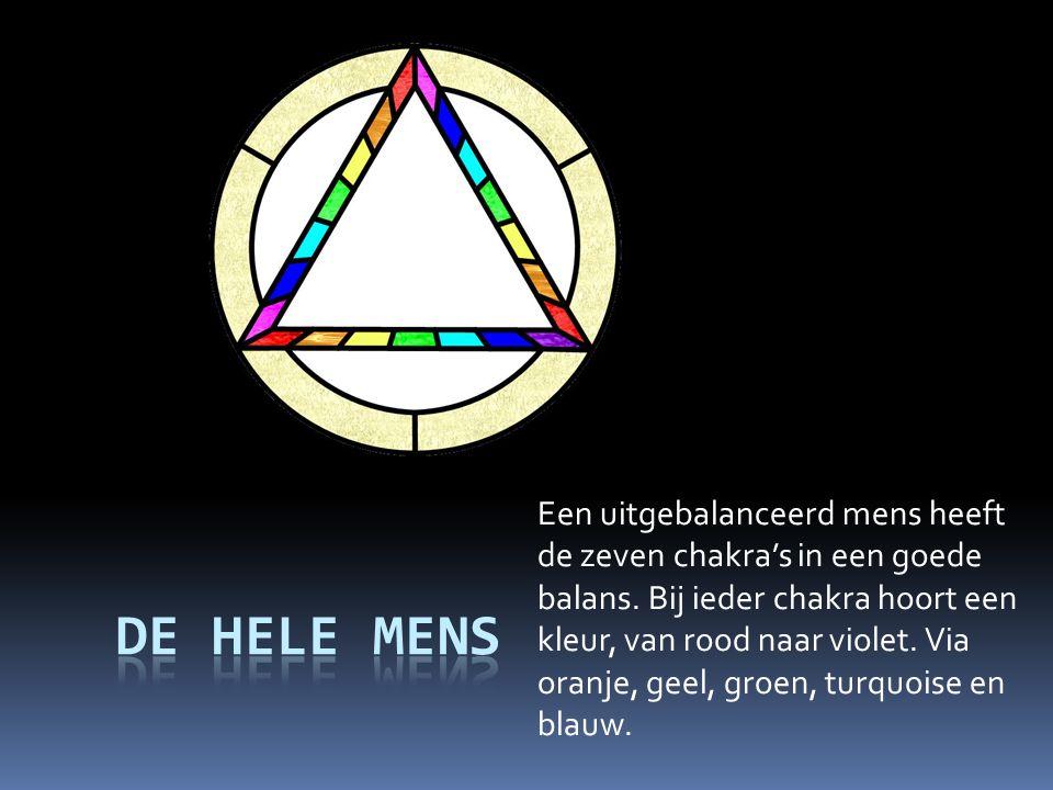Een uitgebalanceerd mens heeft de zeven chakra's in een goede balans