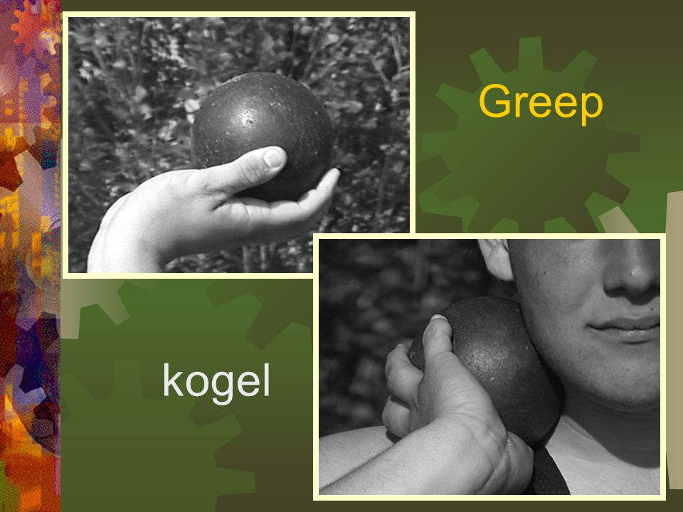 Greep kogel
