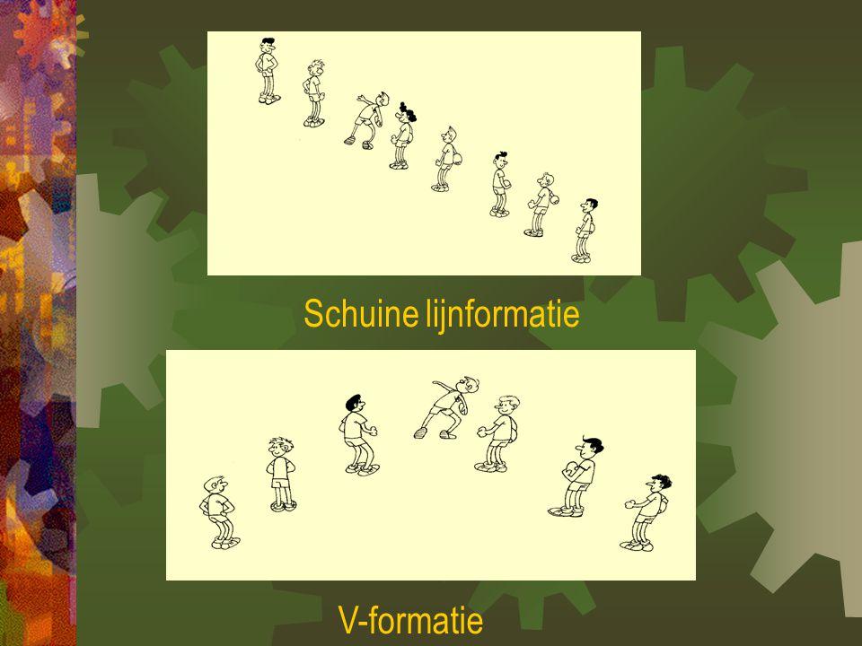 Schuine lijnformatie V-formatie