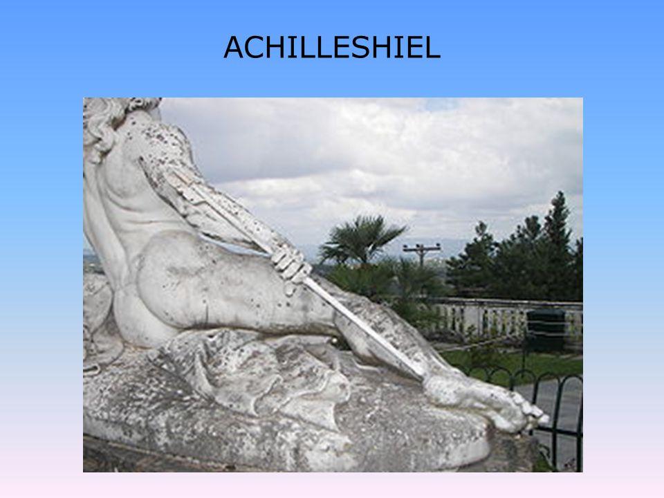 ACHILLESHIEL