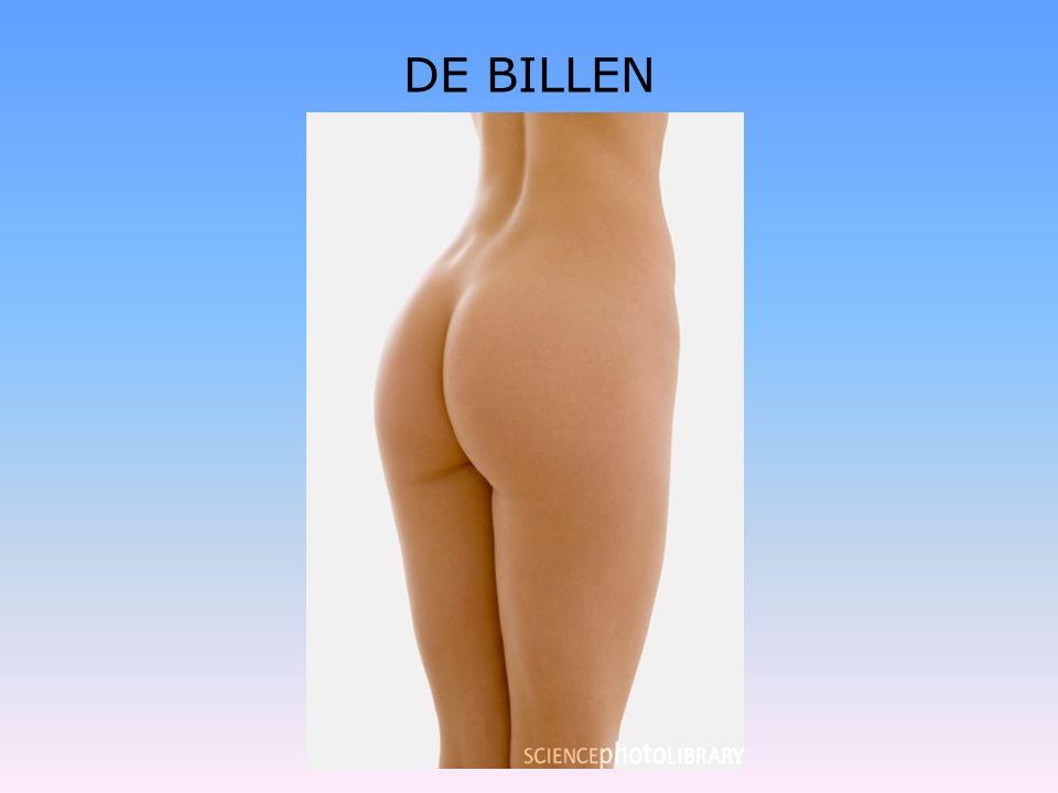 DE BILLEN