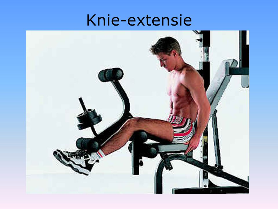 Knie-extensie