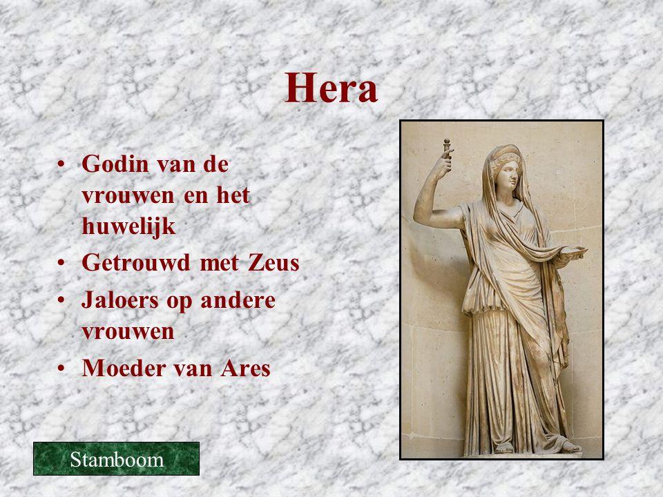 Hera Godin van de vrouwen en het huwelijk Getrouwd met Zeus