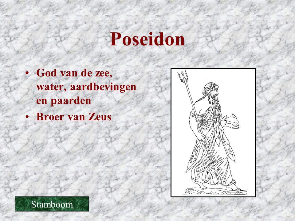 Poseidon God van de zee, water, aardbevingen en paarden Broer van Zeus