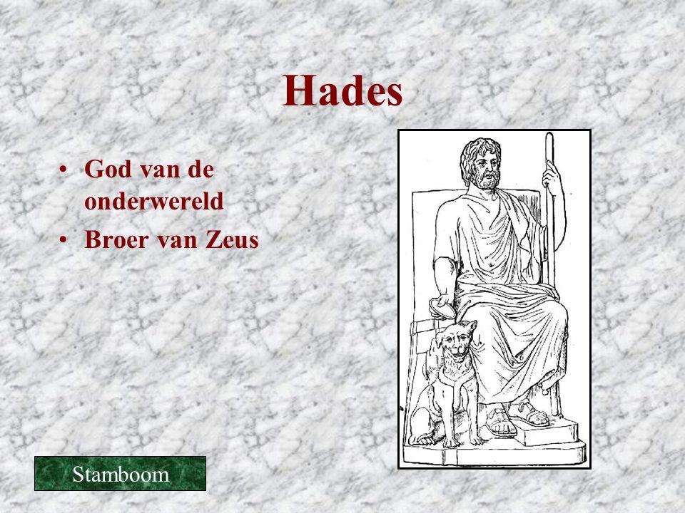 Hades God van de onderwereld Broer van Zeus Stamboom
