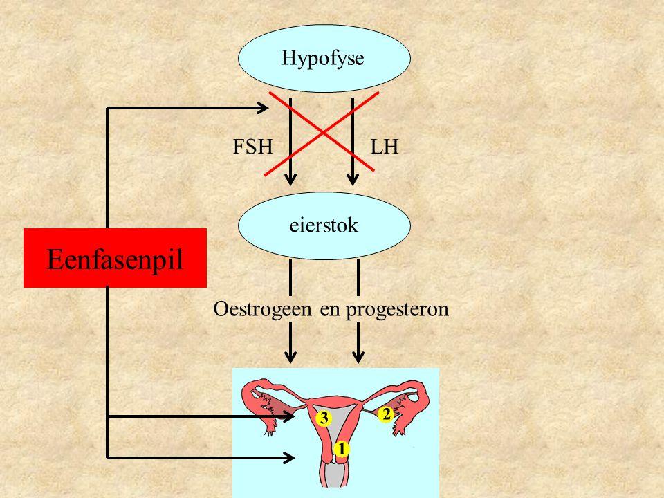 Hypofyse FSH LH eierstok Eenfasenpil Oestrogeen en progesteron
