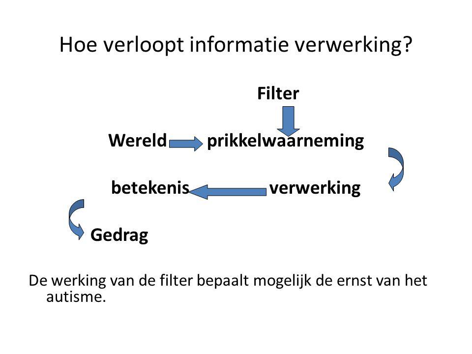 Hoe verloopt informatie verwerking