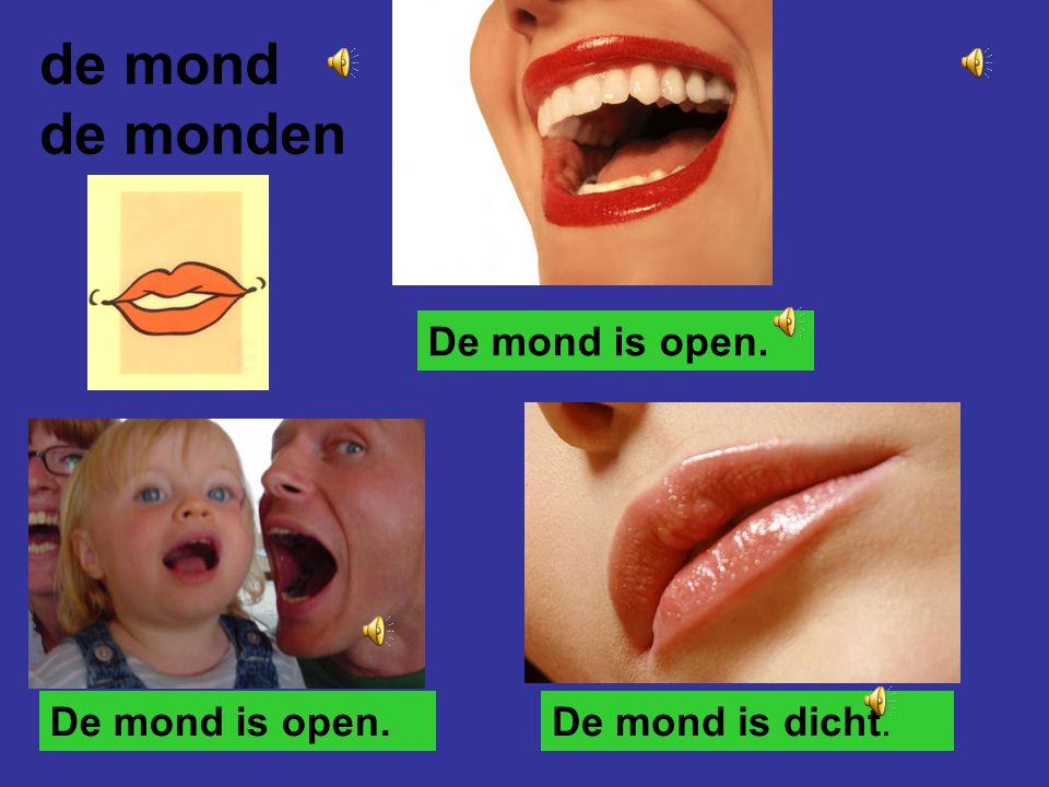 de mond de monden De mond is open. De mond is open. De mond is dicht.