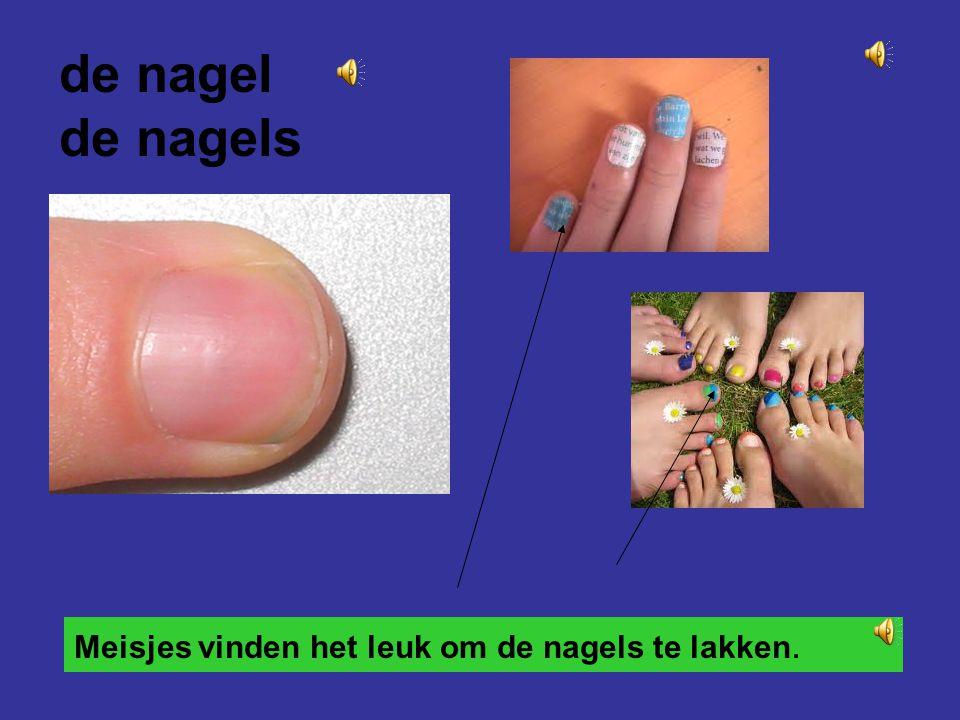 de nagel de nagels Meisjes vinden het leuk om de nagels te lakken.