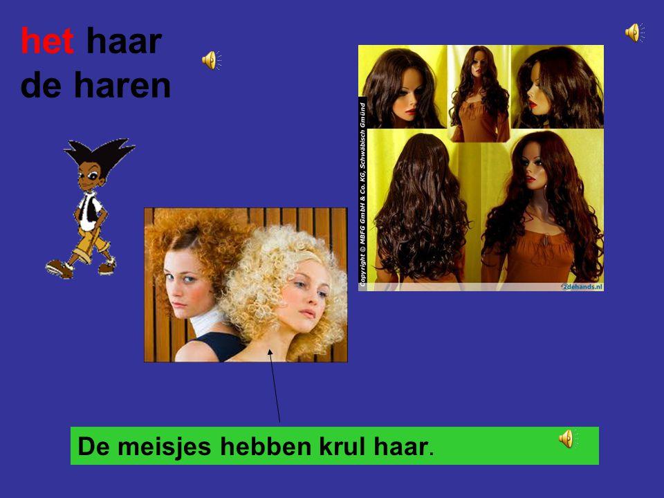 het haar de haren De meisjes hebben krul haar.