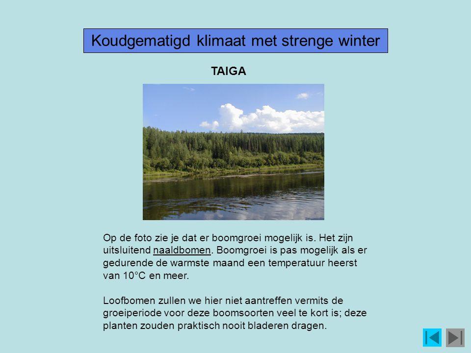 Koudgematigd klimaat met strenge winter