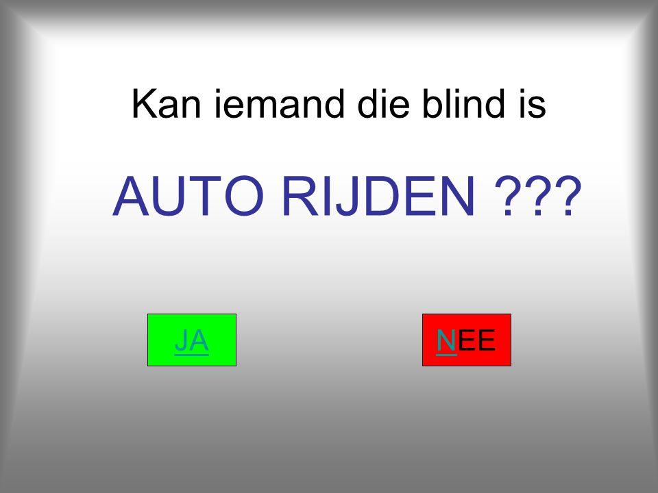 Kan iemand die blind is AUTO RIJDEN JA NEE