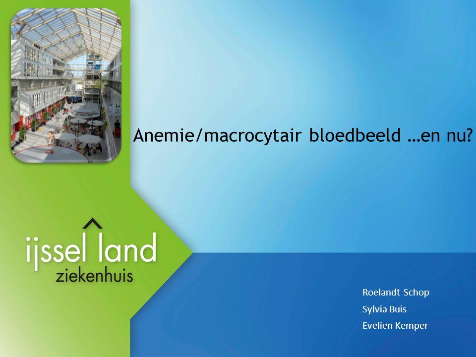 Anemie/macrocytair bloedbeeld …en nu