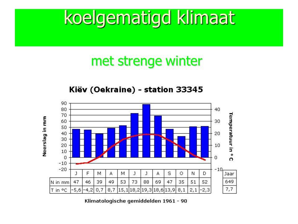 koelgematigd klimaat met strenge winter