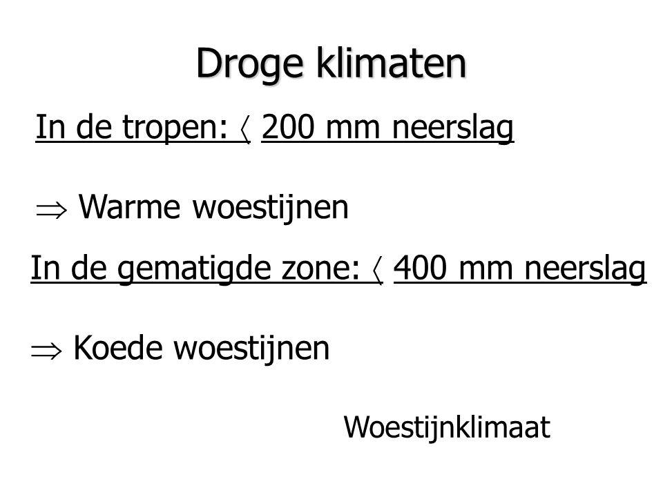 Droge klimaten In de tropen:  200 mm neerslag  Warme woestijnen