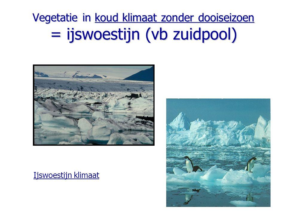 Vegetatie in koud klimaat zonder dooiseizoen = ijswoestijn (vb zuidpool)