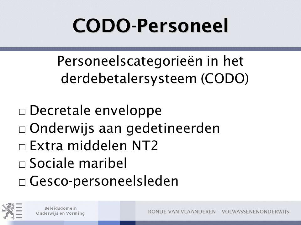CODO-Personeel Personeelscategorieën in het derdebetalersysteem (CODO)