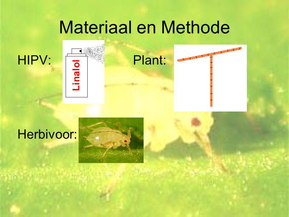 Materiaal en Methode HIPV: Plant: Herbivoor: Linalol
