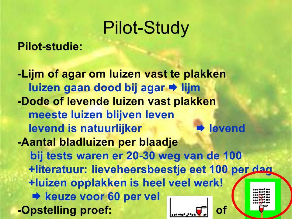 Pilot-Study Pilot-studie: -Lijm of agar om luizen vast te plakken