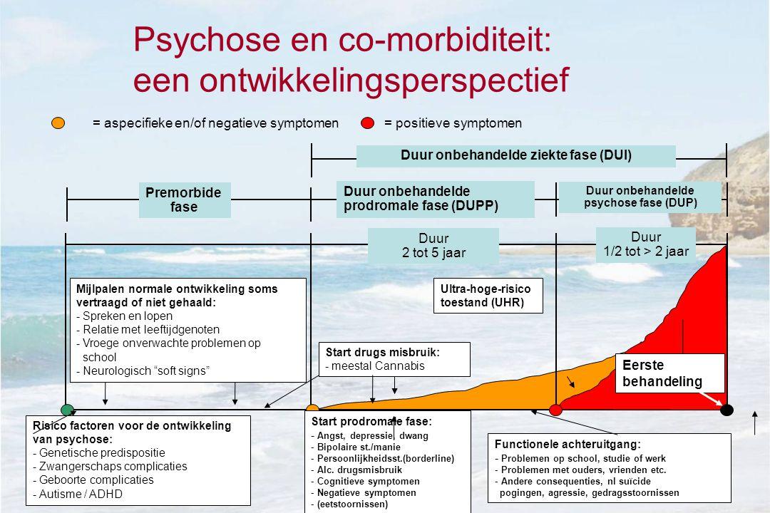 Psychose en co-morbiditeit: een ontwikkelingsperspectief